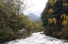 喇叭河美景