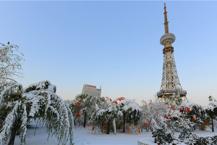 大慶廣播電視塔1