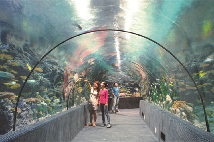 Zhengzhou Aquarium4