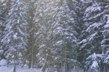随我到世界尽头 冬季北疆行