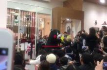水菱说:部长来了--熊本熊现场视频