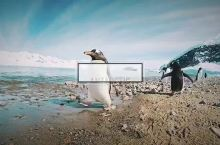 行走在南极大陆上