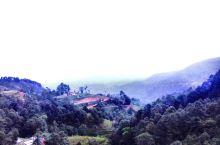 纳加阔特,海拔2千多米、是喜马拉雅的观景台
