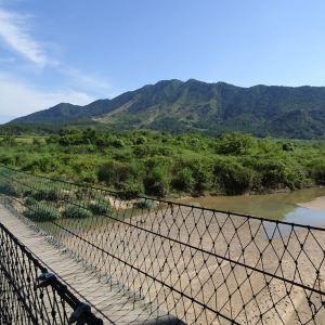 古樟林风景区旅游景点攻略图