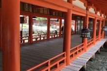 宫岛上的神社