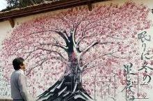 """日本宫城县荒浜海水浴场绽放手印""""樱花"""""""