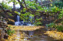 细数贵州7大赏秋之地,原来浓妆淡抹的秋色都藏在了这里!