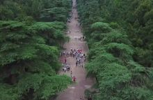 中山陵园风景区