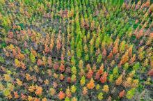 昆明最辽阔的秋天在滇源