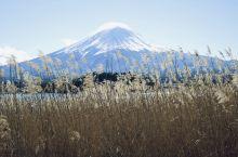 真•富士山下-富士河口湖
