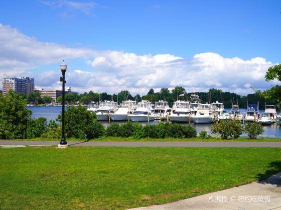 Curtis Hixon Waterfront Park