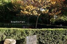 伦敦公园 在伦敦邂逅京都情致