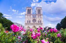巴黎圣母院:180多年时间建成的教堂,修复23年