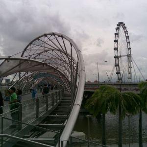 Singapore Food Treats旅游景点攻略图