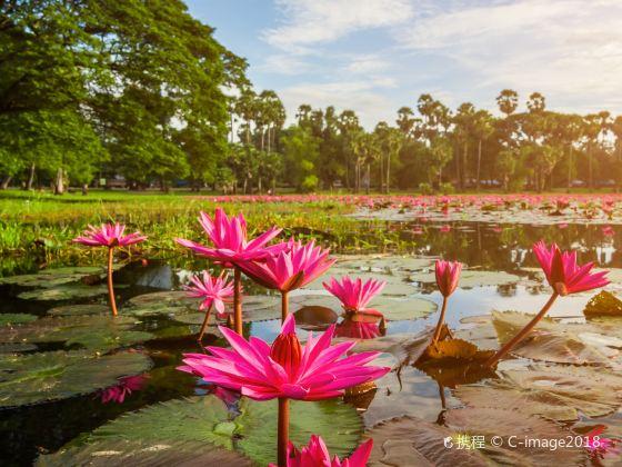 Lianhu Park