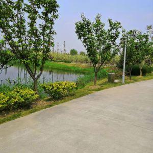 云澜湾·四季花海乐园旅游景点攻略图