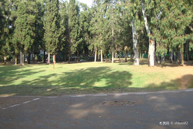 Hayarkon Park4