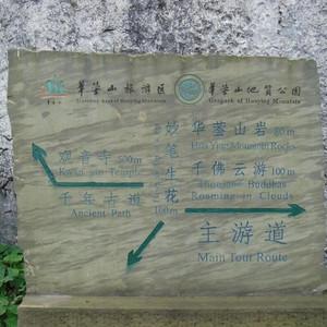 广安游记图文-2008年广安、重庆旅游(游记,十)广安行——华蓥山(二)
