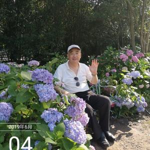 塔城市游记图文-森林公园:光是摄影的生命