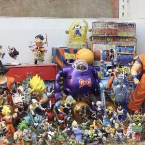 The Shore Toy Museum旅游景点攻略图