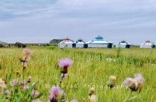 内蒙古自驾6天5晚,我和草原有一个约会