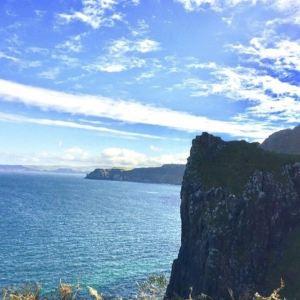 罗蕾莱山崖旅游景点攻略图