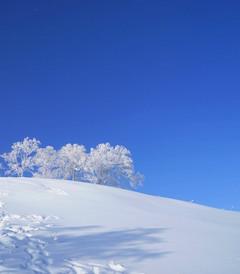 [雪乡游记图片] 带着孩子去看东北,感受冰雪的童话世界,雪乡