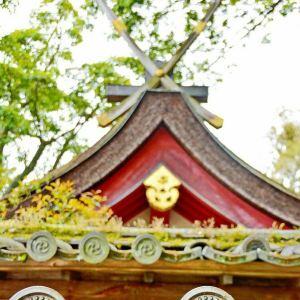 新药师寺旅游景点攻略图