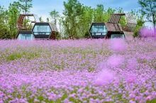 值得一去的酒店——大邑南岸乡苑酒店  酒店位于大邑安仁镇,是新开的,环境很好,卫生也棒,周边有花卉公