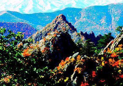 馬鞍山國家森林公園