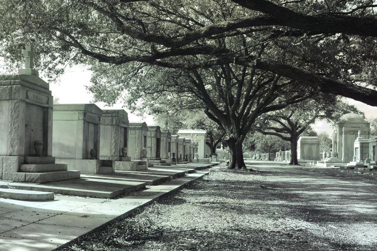 메타이리 묘지1