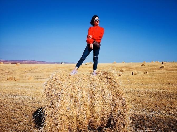 呼伦贝尔大草原 一万个人眼中有一万种呼伦贝尔大草原的秋 – 呼伦贝尔游记攻略插图3