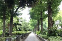横滨山手公园