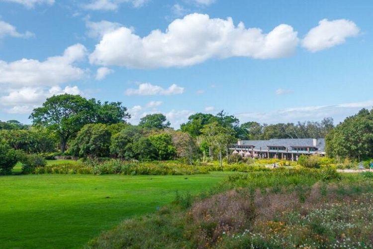 康斯坦博西植物園1