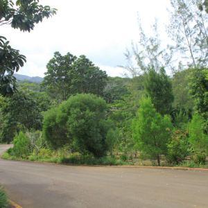 库塔山保护区旅游景点攻略图