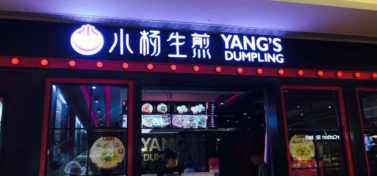 Yang's Fried Dumplings ( Wu Jiang Road )2