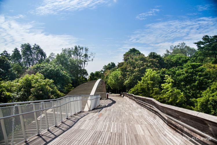 Mount Faber Park3