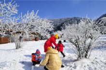来重庆玩雪l你没看错!大西南的山城重庆,一样玩雪玩到嗨☃