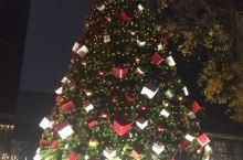 成都·四川 在成都拍摄的圣诞树