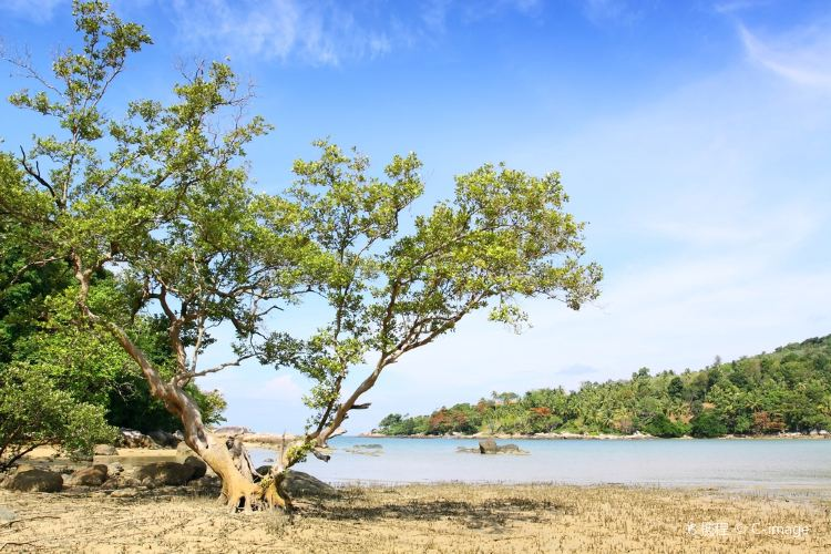 Layan Beach1