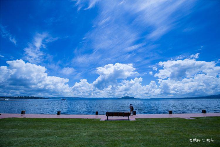 羅托魯瓦湖4