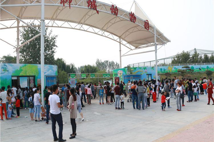 Liaocheng Zoo4