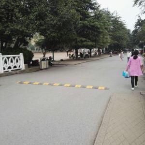 阜阳师范学院旅游景点攻略图