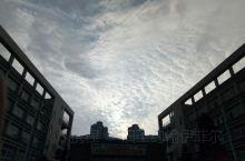 厦门 大片的云掩盖了西斜的金乌 厦门的海 厦大的芙蓉隧道,凝视着哈尔 厦大的芙蓉隧道,与海贼王一起前