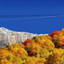飞驒高山图片