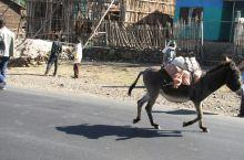 埃塞俄比亚4