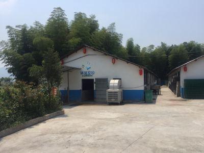 Kangqing Farm