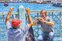 加拉塔大桥众生相#向往的生活