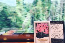 九州小火车旅行—隼人の風号