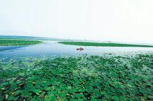 滕州市微山湖湿地公园